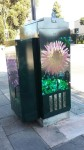 """Root Park Dahlias"" By Ananda Weigand at Hays St. & East 14th St."