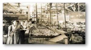 del-monte-cannery